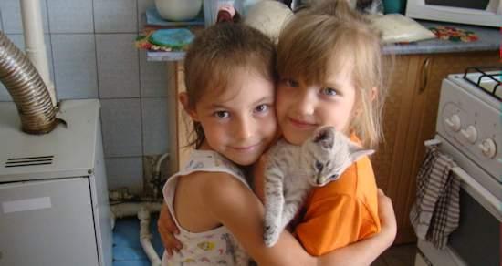 Ежегодный доклад президента фонда РАДУГА Моники Шоппуи